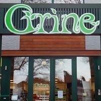 Grine Tournai