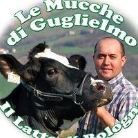 Le Mucche di Guglielmo