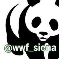 WWF SIENA