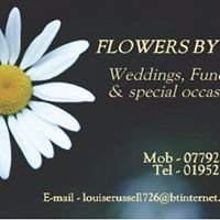 Flowers Bylou
