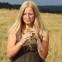 ViVere-Aromapflege - Schule für Aromatherapie und Aromapflege