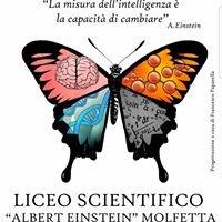 """Liceo Scientifico """"Albert Einstein"""" - Molfetta"""