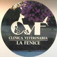Clinica Veterinaria La Fenice