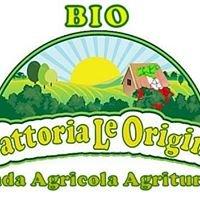 """BIOAgriturismo """"Fattoria le Origini"""""""