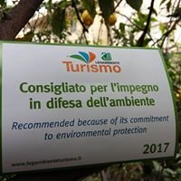 "B&B ""Il Giardino di Tonia - Tonia's garden"" Tourism around Vesuvius"