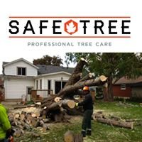 Safe Tree Professional Tree Care