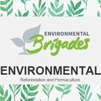 University of Pittsburgh Global Environmental Brigades