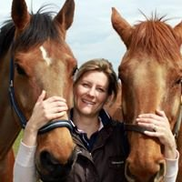 Jo Morton Equine and Canine Mctimoney and Sports Massage Therapy