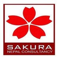 Sakura Nepal Consultancy