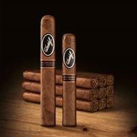 Davidoff of Geneva Cigar Bar