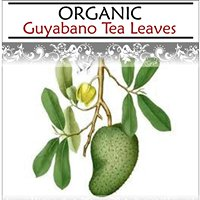 Organic Guyabano Tea Leaves