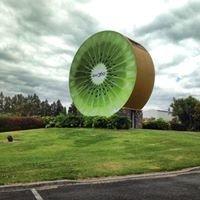 Kiwi 360, Te Puke