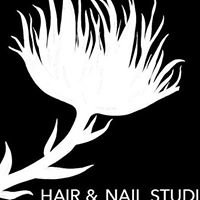 Perfect Touch Hair & Nail Studio