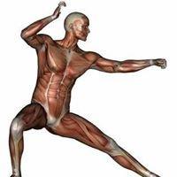 Grace Hayes - Sports Massage/Kinesiology/Reiki