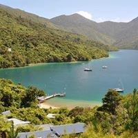 Punga Cove, New Zealand
