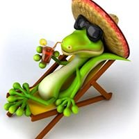 Funky Lizard