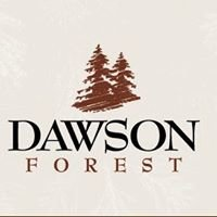 Dawson Forest Apartment Homes