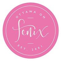 Fenix Solutions Inc