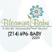 Blooming Baby - 3d/4d Ultrasound Studio