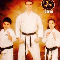 Adirondack Martial Arts Academy