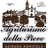 Azienda & Agriturismo della Pieve