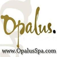Opalus Salon and Spa