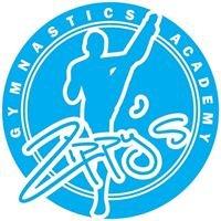 Zippy's Gymnastics Academy