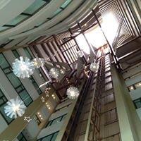 Hilton Santo Domingo - República Dominicana