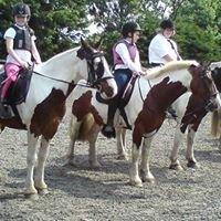 Hazelden Equestrian Centre