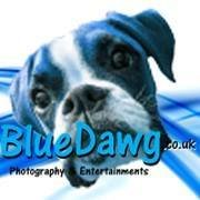 Blue Dawg Entertainments