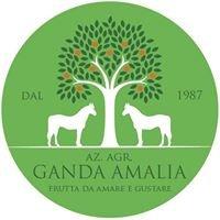 Az. Agr. Ganda Amalia
