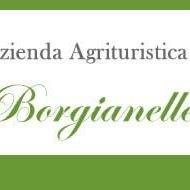 """Azienda Agrituristica """"LE BORGIANELLE"""""""