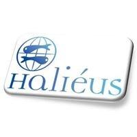 Haliéus