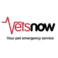 Vets Now
