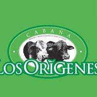 Los Origenes