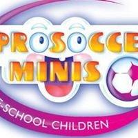 Pro-Soccer Minis