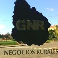 Gandolfo Negocios Rurales S.R.L