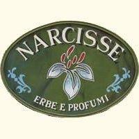Narcisse erbe e profumi - Taormina