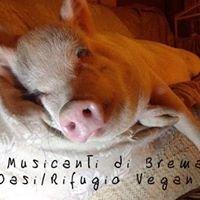 I Musicanti Di Brema  - rifugio / oasi vegan