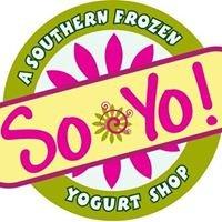 """So-Yo """"A Southern Frozen Yogurt Shop"""""""