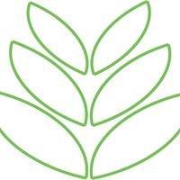 Seeds2Trees Yoga
