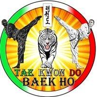 Taekwondo Baek Ho
