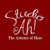Studio AH! The Artistry of Hair
