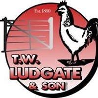T.W. Ludgate & Son Ltd
