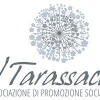 IL Tarassaco