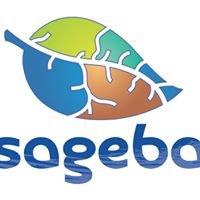 Sageba