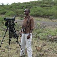 Birdwatching Lake Baringo
