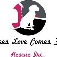 Aimees Love Comes First Rescue inc.