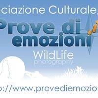 Associazione Culturale Provediemozioni.it