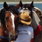 Agriturismo Piccola Raieda, Tappa e Vacanze a cavallo sulla Via degli Dei